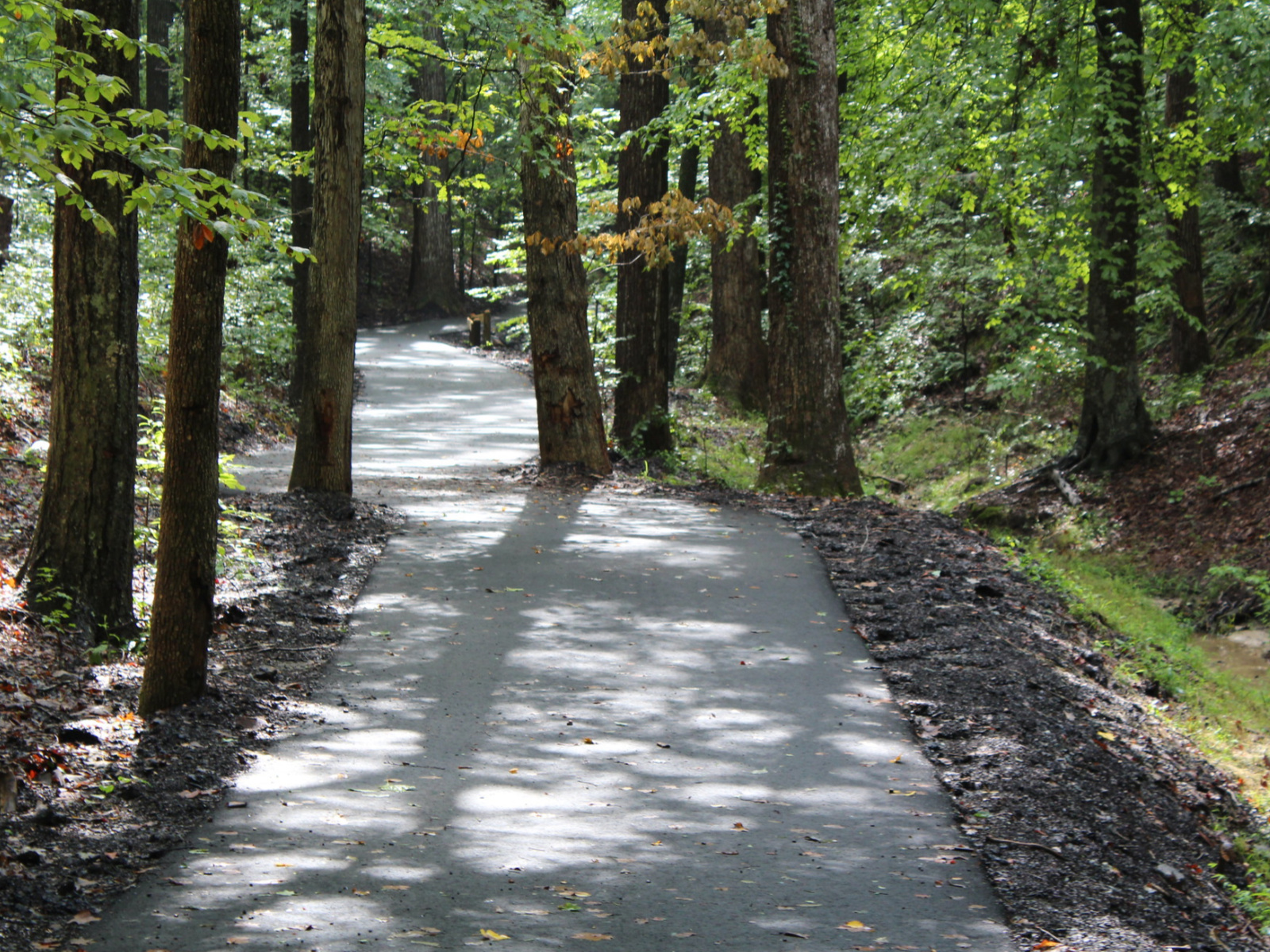 Rich Park in Mocksville Temporarily closed