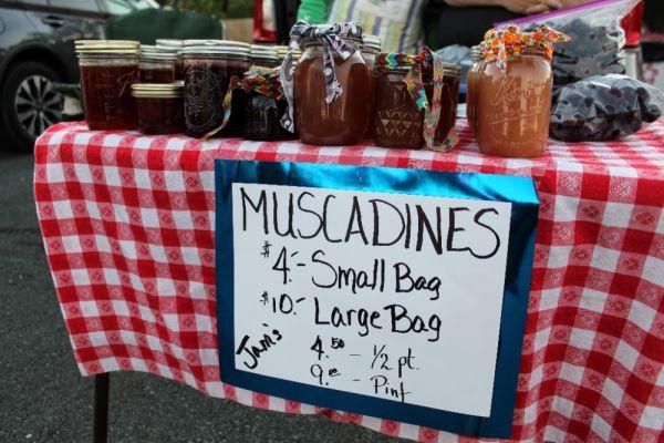 Mocksville Farmer's Market at Junker's Mill from May through November